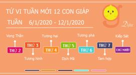 Tử vi tuần 6/1/2020-12/1/2020 tuổi Dậu - Hung tinh nhập mạng, tai ương huyết quang