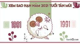 Xem sao hạn năm 2021 tuổi Tân Mùi 1991: Thái Âm, Thái Bạch tụ hội