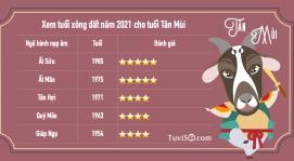 Xem xông đất năm 2021 tuổi Tân Mùi 1991: Quý Mão mang tài lộc