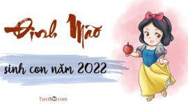 Đinh Mão sinh con năm 2022: Cân nhắc khi muốn có Hổ con