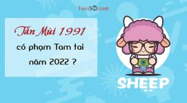 Sinh năm 1991 năm 2022 có phạm Tam tai không? Trên đà chiến thắng