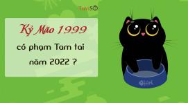 Sinh năm 1999 năm 2022 có phạm Tam tai không? Bách Việt trợ vận