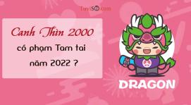 Sinh năm 2000 năm 2022 có phạm Tam tai không? Thiên Cẩu ám vía