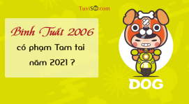 Sinh năm 2006 năm 2021 có phạm Tam tai không? Dễ dàng xung đột