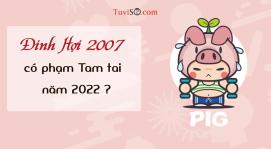 Sinh năm 2007 năm 2022 có phạm Tam tai không? Tự mình hại mình
